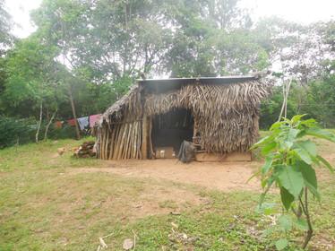 Typical Dwelling