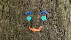 tree-1098943_1920.jpg