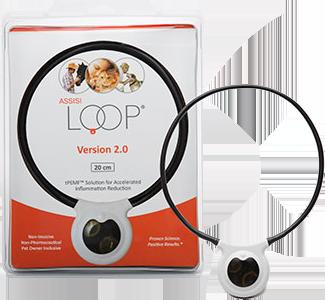 Loop20cm-removebg-preview-1.png