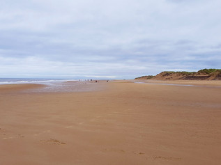 Agencies issue safety advice for summer visitors to Sefton's coast