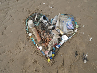 Friends of the Sefton Coast - Beach Clean events