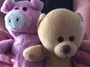 Did you find missing Piggy at the Southport fireworks?