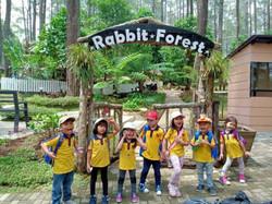 preschool-field-trip