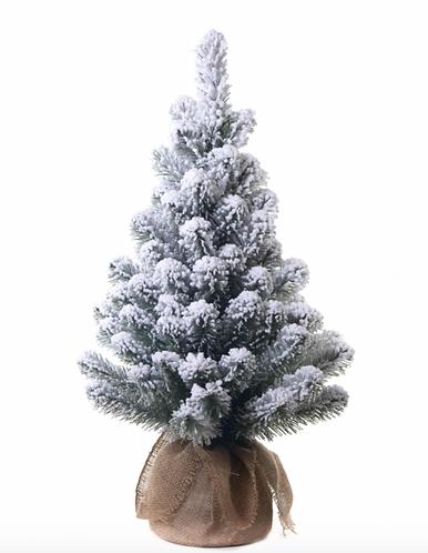 Winter Time - Abetone innevato con sacco 60cm.