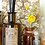 Thumbnail: Apothecary - Diffusore 120ml Iris e Magnolia