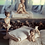 Thumbnail: Romantic Ballet - Ballerina in piedi bianca