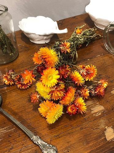 Jardin - Mazzo fiori essiccati arancione