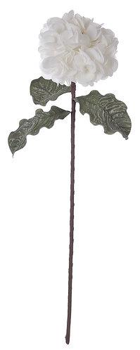 Hydrangea - Ortensia bianca cm.74 h