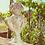 Thumbnail: Roma - Vaso decorativo 77 cm.