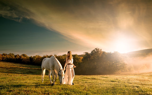 woman grazing white horse meadow sunset.