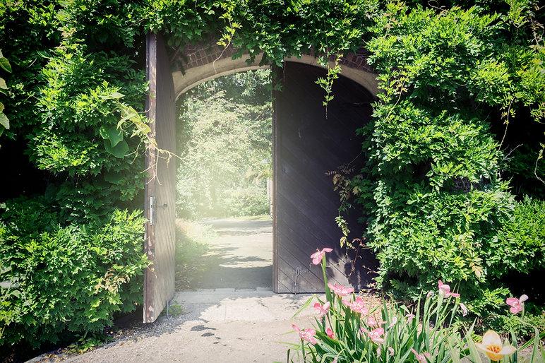secret garden 3 .jpg