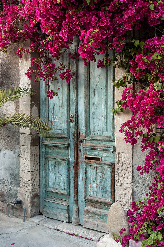 antique blue door with bouganvillea.jpg