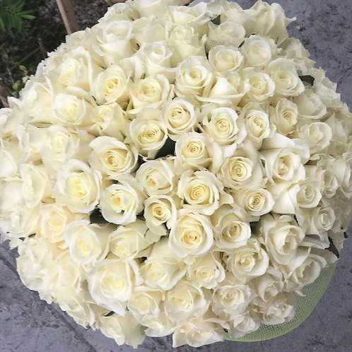 100 White Roses - Premium Bouquet