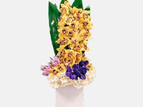 Wealth Orchids Arrangement