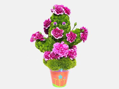 Happy Cactus Flower Toy