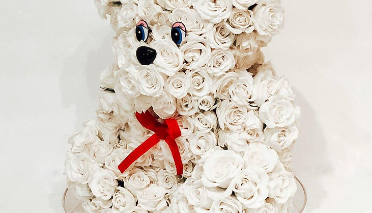 Teddy Bear made of Natural White Roses
