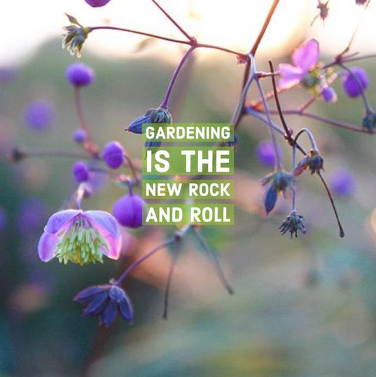 GardeningRockRoll.png