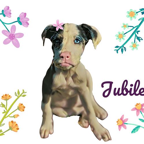 Postcard- #9 Jubilee