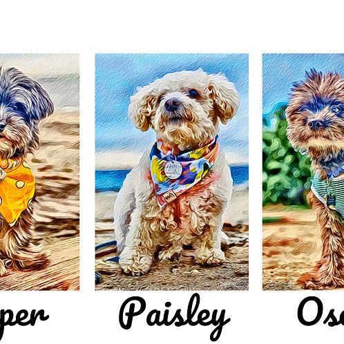 Postcard- #11, #12, & #13 Oscar, Piper, & Paisley's Story