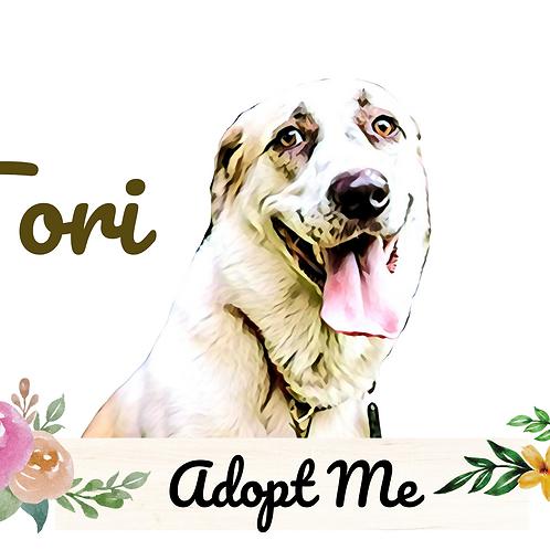 Postcard- #15 Tori's Story