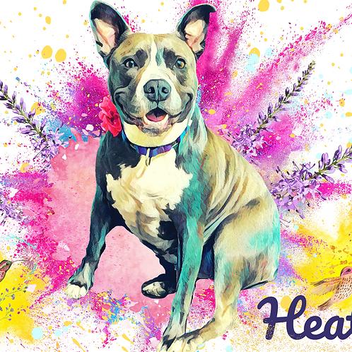 Postcard- #20 Heather (Austin Pets Alive!)