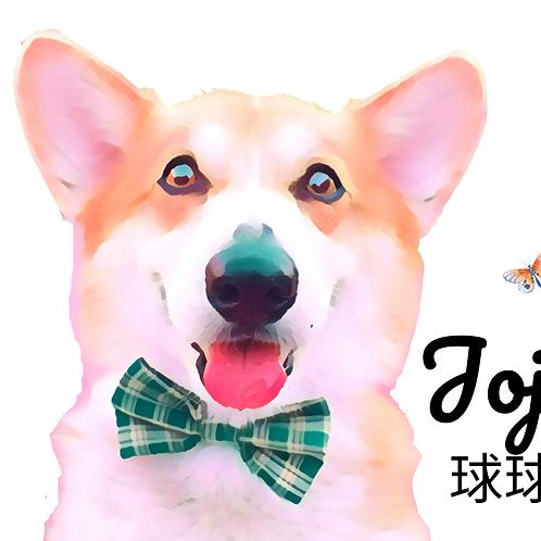 Postcard- #14 Jojo's Story
