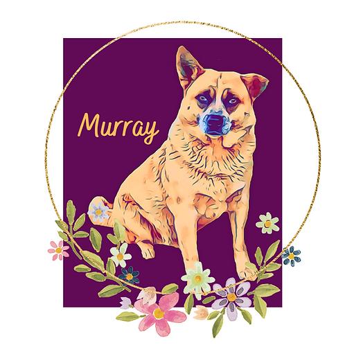 Postcard- #3 Murray