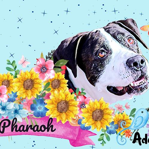 Postcard- #18 Pharaoh's Story (Do Over Dog)