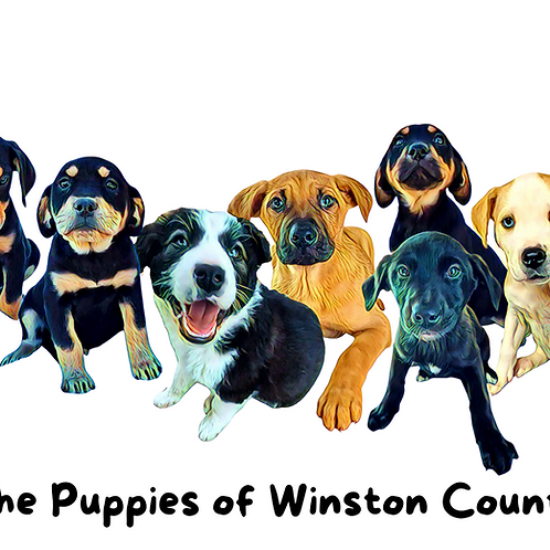 """Postcard- """"The Puppies of Winston County"""""""