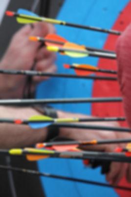 Diana arrows.jpg