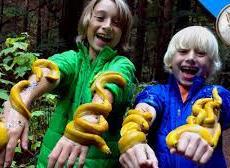 banana slugs!