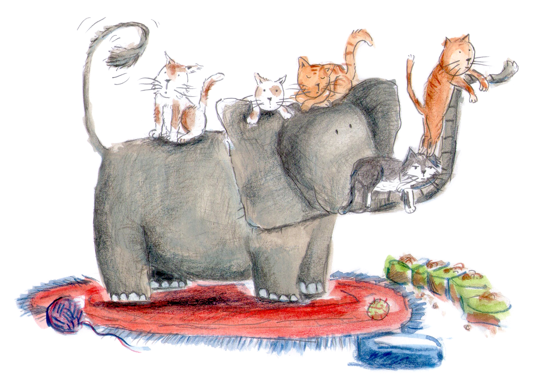 Elephant and cats
