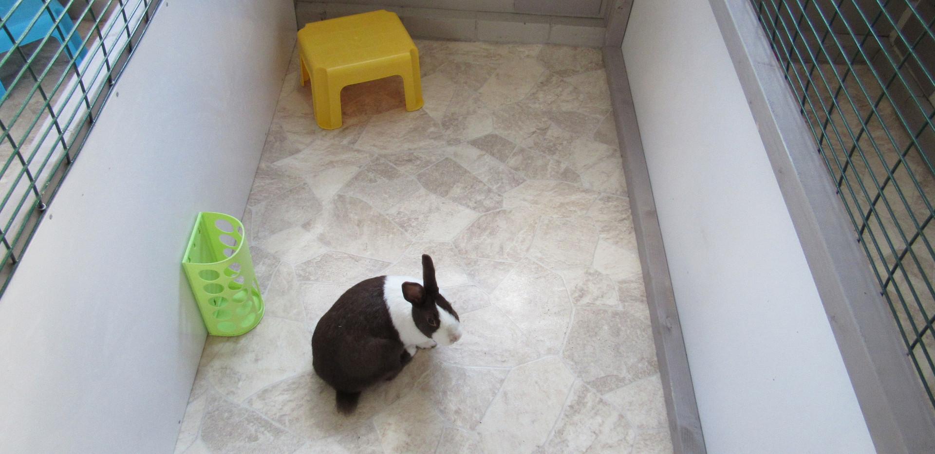 Bunny Lodge Internal Pen