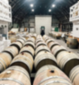barrels in winery.jpg