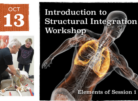 Have you ever thought about a career in Structural Integration?