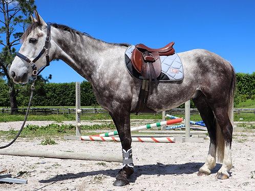 Grey saddle pad