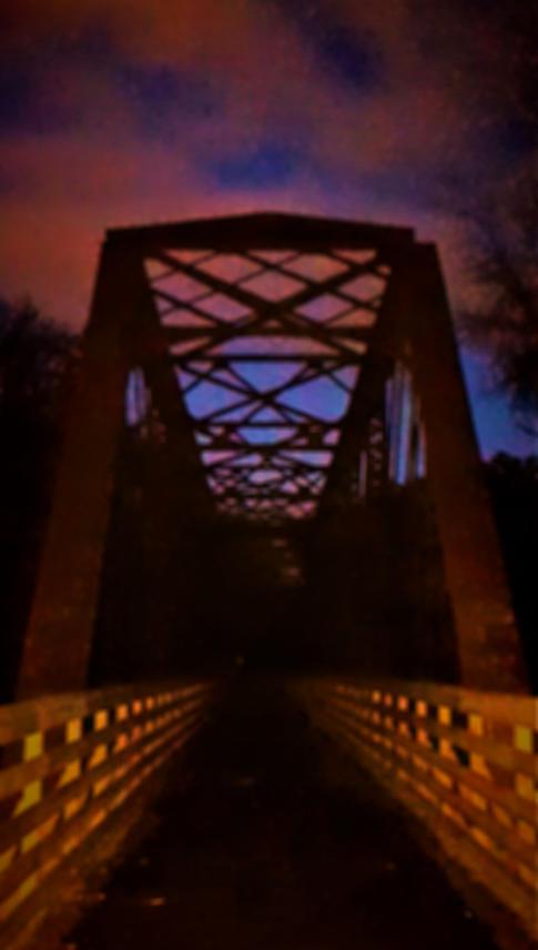 Bridge to Terrorbithia