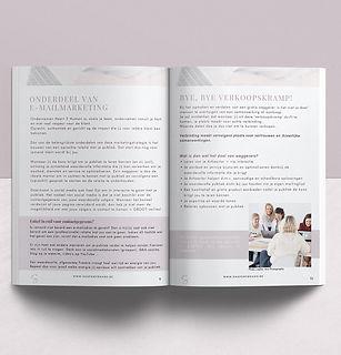 Magazine Spreads (ebook freebies) wix.jp