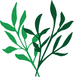 Foliage-one.png