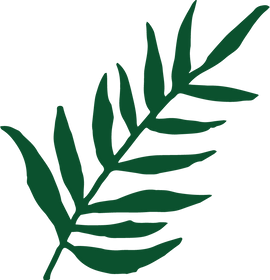 Foliage-Four_edited.png