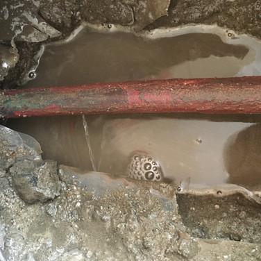 Leak in Pipe