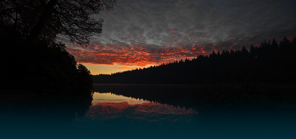 Shearwater Lake_Dk Green Grad.png