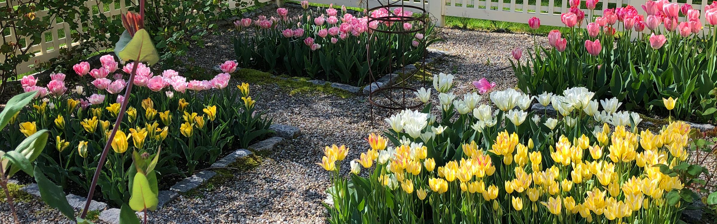 Garden-Maint