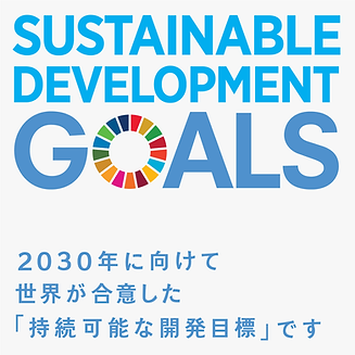 sdg_icon_Goals.png