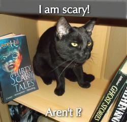 Rayne Hall - Sulu I am scary!