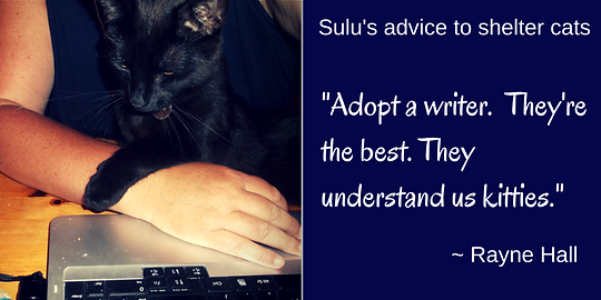 Rayne Hall - Sulu's advice to shelter cats