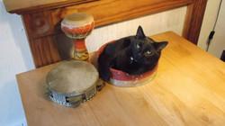 Rayne Hall - Sulu tambourine