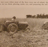 Girls Plowing Fields - 1946