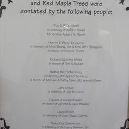 Tree Dedication at (Shannon) Shag Williams Park