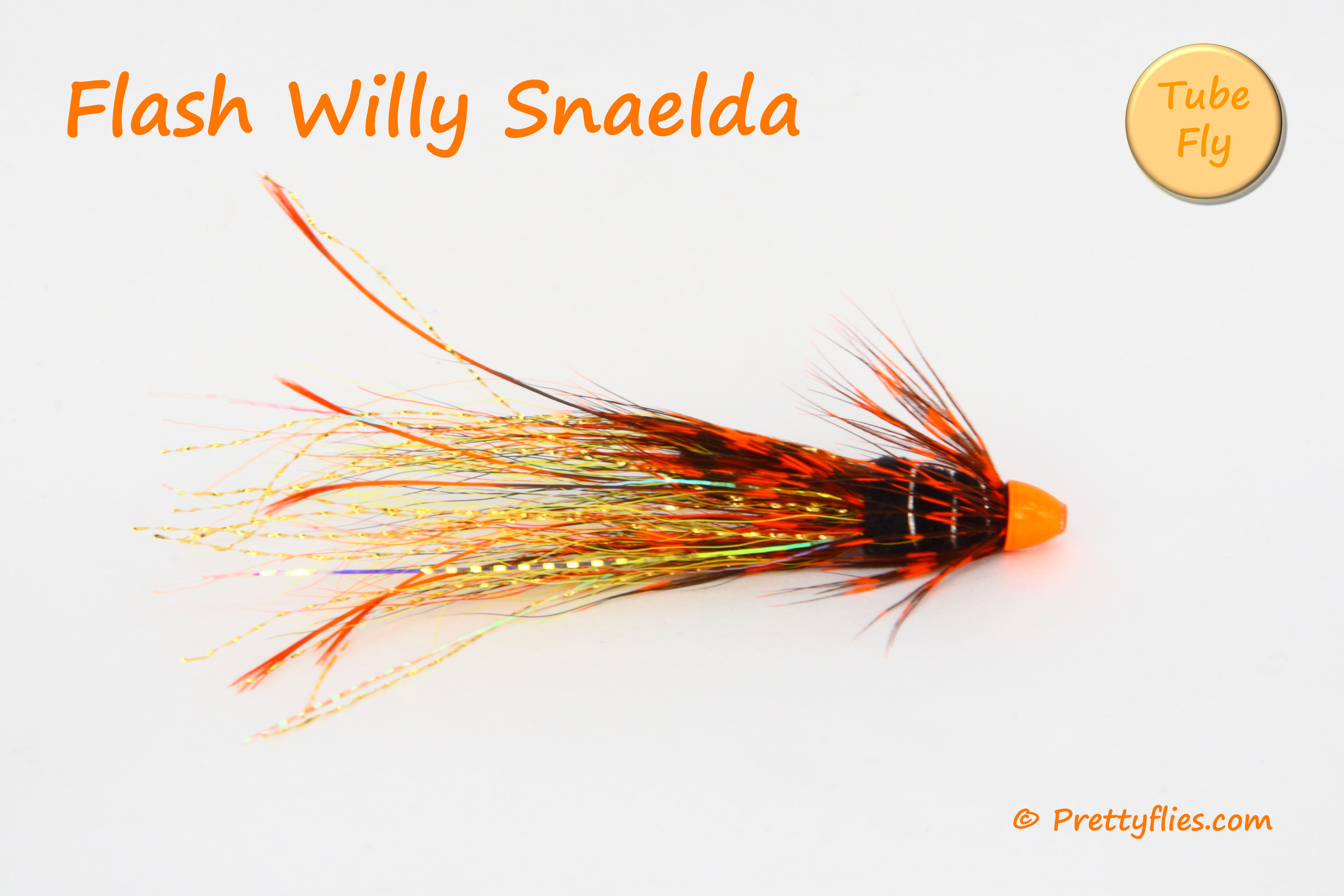 Flash Willy Snaelda copy.jpg